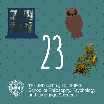 23 - Howlat the owl advent calendar
